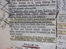 Psalms 33 001